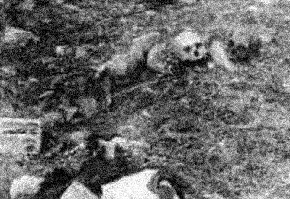 ٦ جماجم وعظام وثياب وحذاء نسائي لأشخاص خطفوا على يد «القوات»